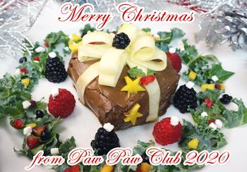 2020_ChristmasCake-magazine.jpg