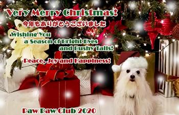 2020_Christmas_Card-PPC.jpg