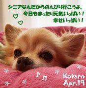 kotaro-041019-compressor.jpg