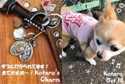 kotaro-charm-102418-compressor.jpg