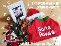 milk_kota-122420-min.jpg