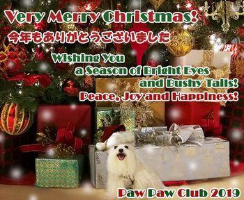 ppc-christmas_card-2019.jpg
