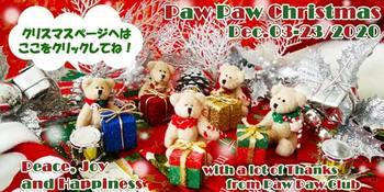 ppc_christmas-2020-500x250-magazine-compressed.jpg