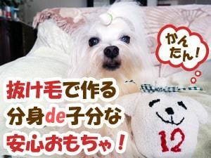 toy_with_doggies_hair-300x225-magazine-min.jpg